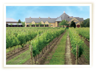 Peller Estate Winery